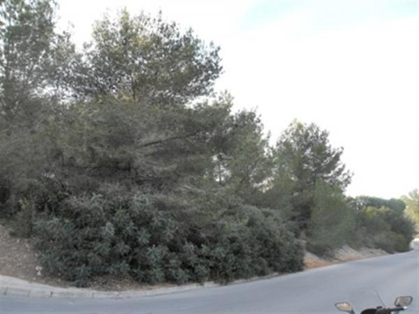 Photo number 1. Land / Ground for sale  in Denia. Ref.: SLH-5-18-5735