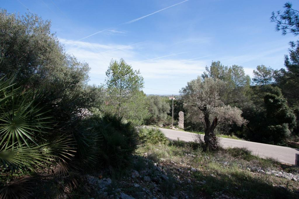 Land / Ground for sale  in Orba Costablanca, Alicante (Spain). Ref.: PRT-151701