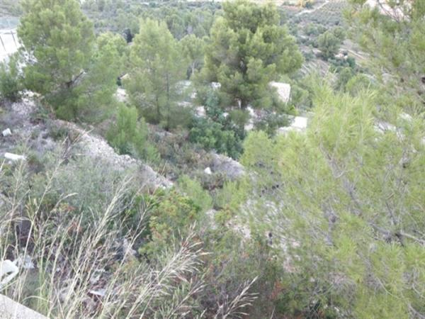 Photo number 7. Land / Ground for sale  in Denia. Ref.: SLH-5-18-9349