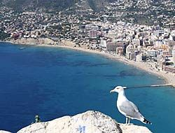 To live in Calpe